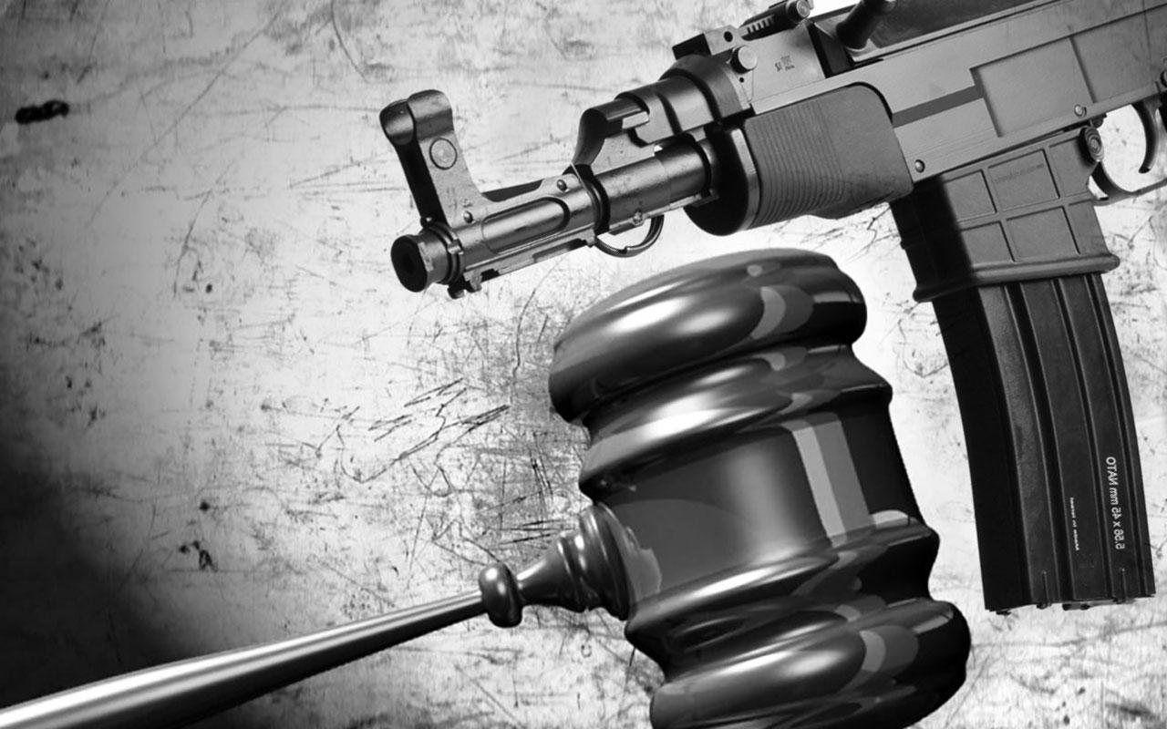 Zbrane na civilné použitie - hromadná pripomienka